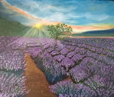paysage de lavande