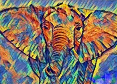 éléphant coloré